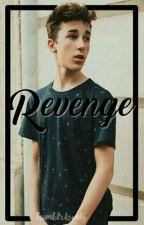 R E V E N G E || Hunter Rowland. by tumblrlovely