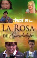 Típicos de la Rosa de Guadalupe by painting_flowers96