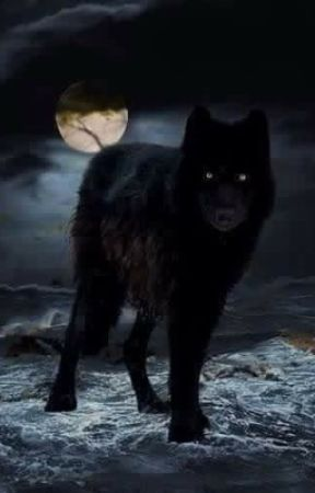 The Legend Of Black Wolf  by depressed_moxy
