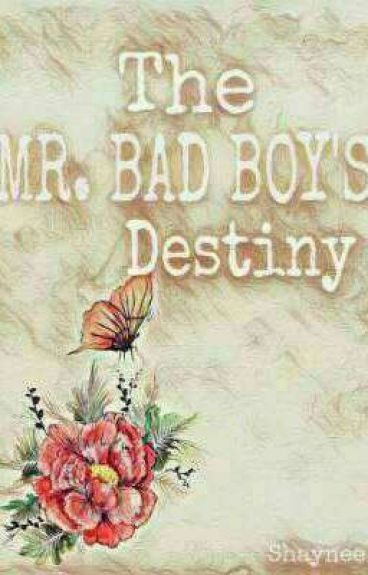 The Mr. Bad Boy's Destiny
