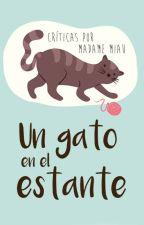 Un gato en el estante by Madame_Miau
