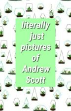 Literally Just Pictures Of Andrew Scott by trucing