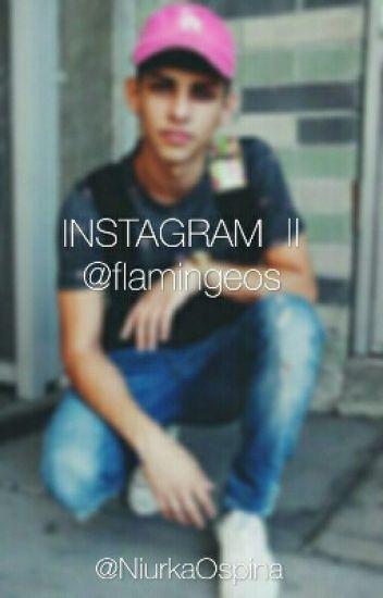 INSTAGRAM  ||  @flamingeos