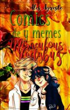 Comics y Memes de Miraculous Ladybug by Ales_Agreste