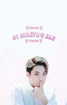 [Serries/ AllGyu]Nhật ký làm thụ của Kim Mingyu