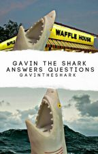 Gavin The Shark Answers Questions  by gavintheshark