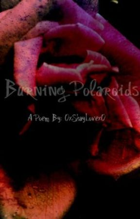 Burning Polaroids by 0xShayLovex0