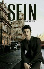 sein //shawn mendes [slow updates] by shawnsteeth