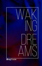 Wakingdreams by bagliore