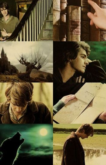 Wolf's Bane Young!Remus Lupin x Reader (Slow Updates