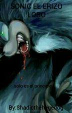 Sonic El Erizo Lobo by Shadicthehegedog
