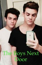 The Boys Next Door - The Dolan Twins X Reader by animallover627