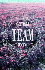 [GOTJAM TEAM] All About Us by GotJamTeam_SVTc
