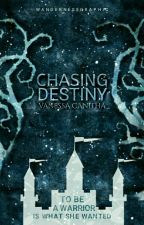 Chasing Destiny by Nessasary_