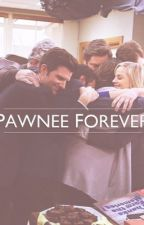 Parks + Recreation: Pawnee Forever by disneylifee
