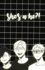 shes a he?! ❀ haikyuu various x reader by iwaoizumi