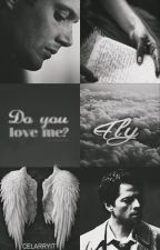 Fly • Destiel by celarryit