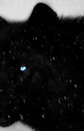 Midnights Journey by WildMidnightSpirit
