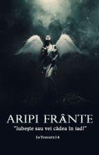 ARIPI FRÂNTE by IoYonutz14