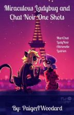 Miraculous Ladybug and Chat Noir One Shots. by PaigeAWoodard