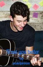 Treat you better - Shawn Mendes *COMPLETED* by pastelpinkiee