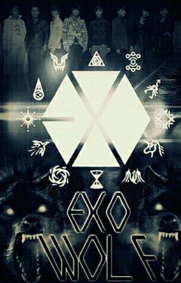 《EXO WOLF》Exo & TN