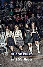 BLACK PINK In YG's Area by R_in_K