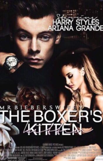 The Boxer's Kitten (hs au)