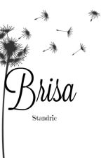 Brisa by standric
