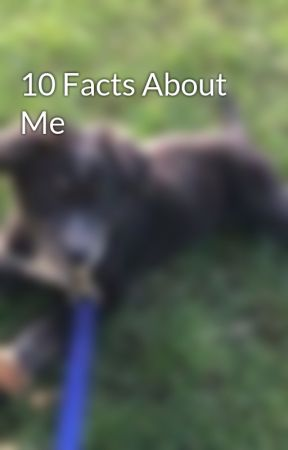 10 Facts About Me by Shelbeast1
