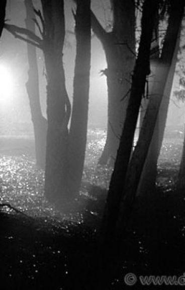 Darkness by Awayinmyownworld