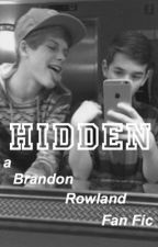 Hidden // a Brandon Rowland FanFic by lowkeybrandoo