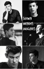 Shawn Mendes Imagines by Megmendess