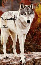 انتَ مستذئب؟ by sesocool