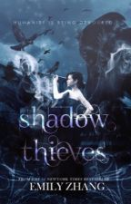 Shadow Thieves | Nanowrimo by zero-infinity