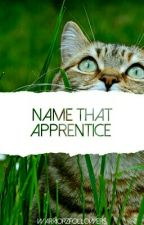  warriors   name that apprentice by WarriorzFollowers