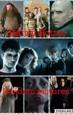 Harry Potter Random Pictures by LxPotter17