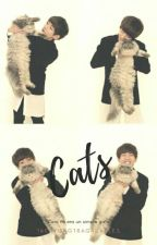 Cats ➾VHOPE by TAEHYUNGTRAGASABLES
