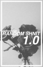 Random Shnizle 1.0 by gialikesbands