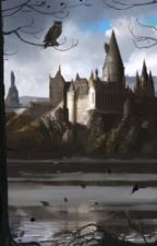 Disastrous ~ Harry Potter spin-off Lily and James by nerdysnowflake