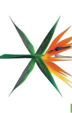 EXO  by Vchibi