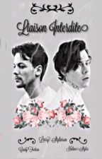 Liaison Interdite (Larry Stylinson)  by HalineStyles