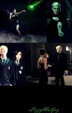 Pureblood Love / Harry Potter fanfic/ by LizzyMalfoy