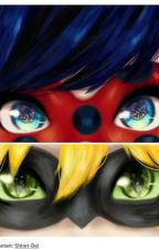 Miraculous Story: Ladybag & Cat Noir by Anna-medium