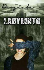 Dvojčata v Labyrintu [CZ TMR FF] by nwmjaksejmenovat