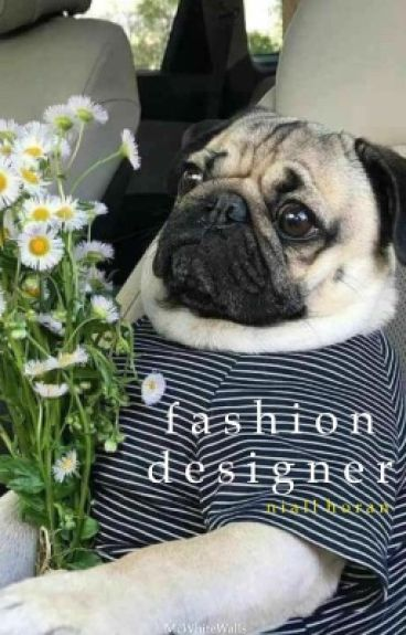 Fashion Designer || Niall Horan