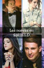 Las nuevas en S.H.I.E.L.D.  by DulZomber2