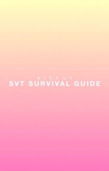 Seventeen Survival Guide (Joke Book 2)