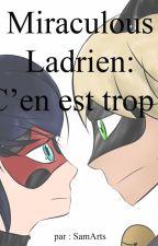 Miraculous Ladrien : C'en est trop ! by SamArts