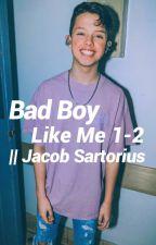 Bad boy like me 1-2    Jacob Sartorius by alessiasanta123